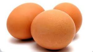 egg æg