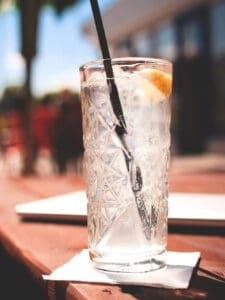 gin tonic smagning