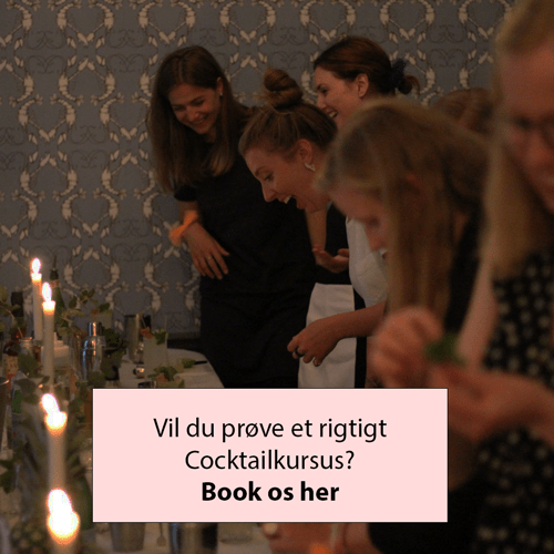 book cocktailkursus cocktaiils.dk